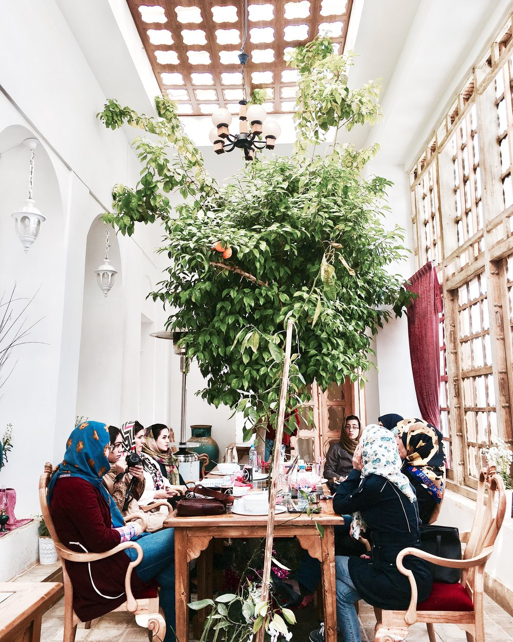 Shot by Ali Reza