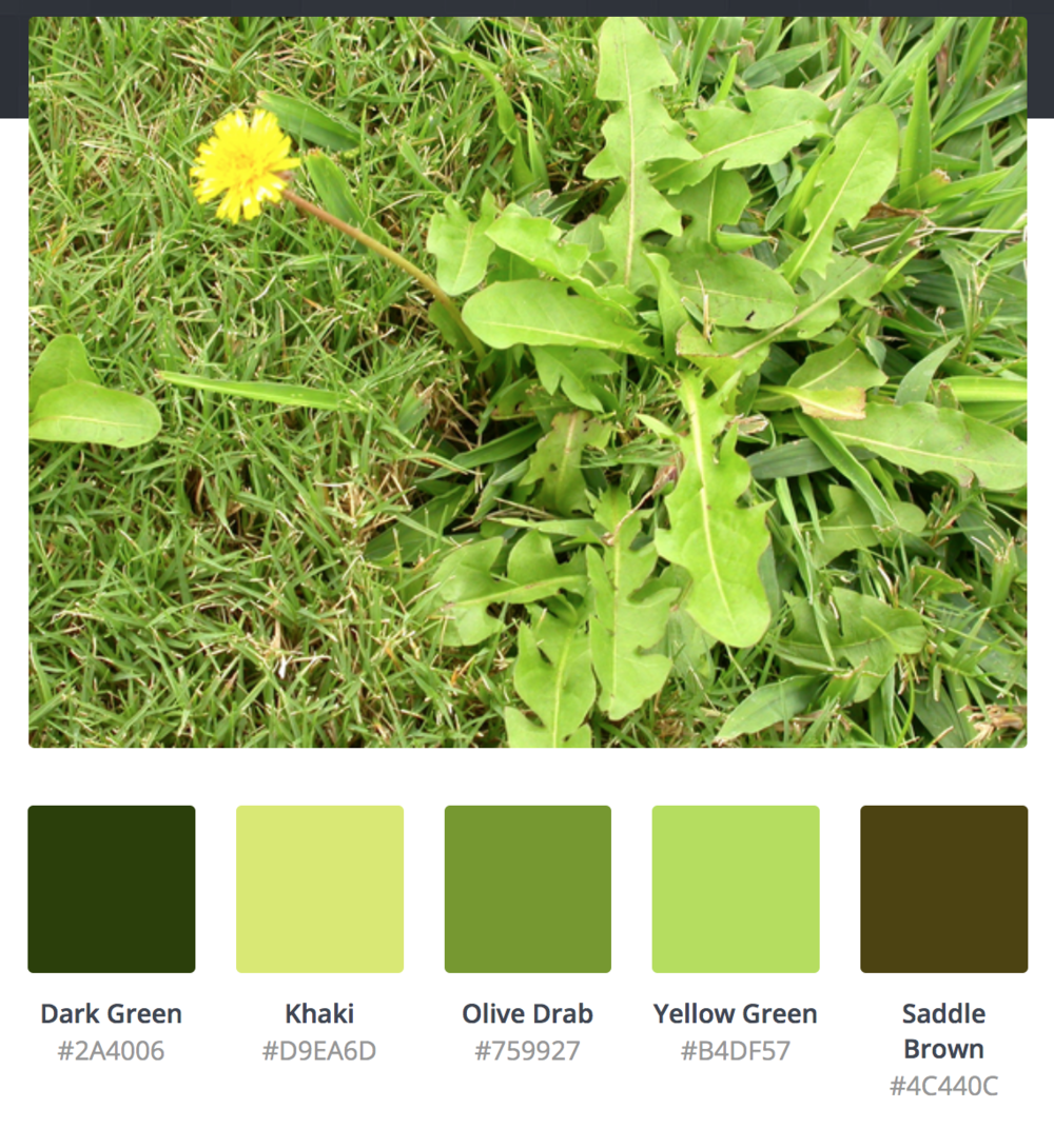 Ugly weeds produce happy shades of green -