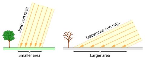 Summer Sun vs. Winter Sun