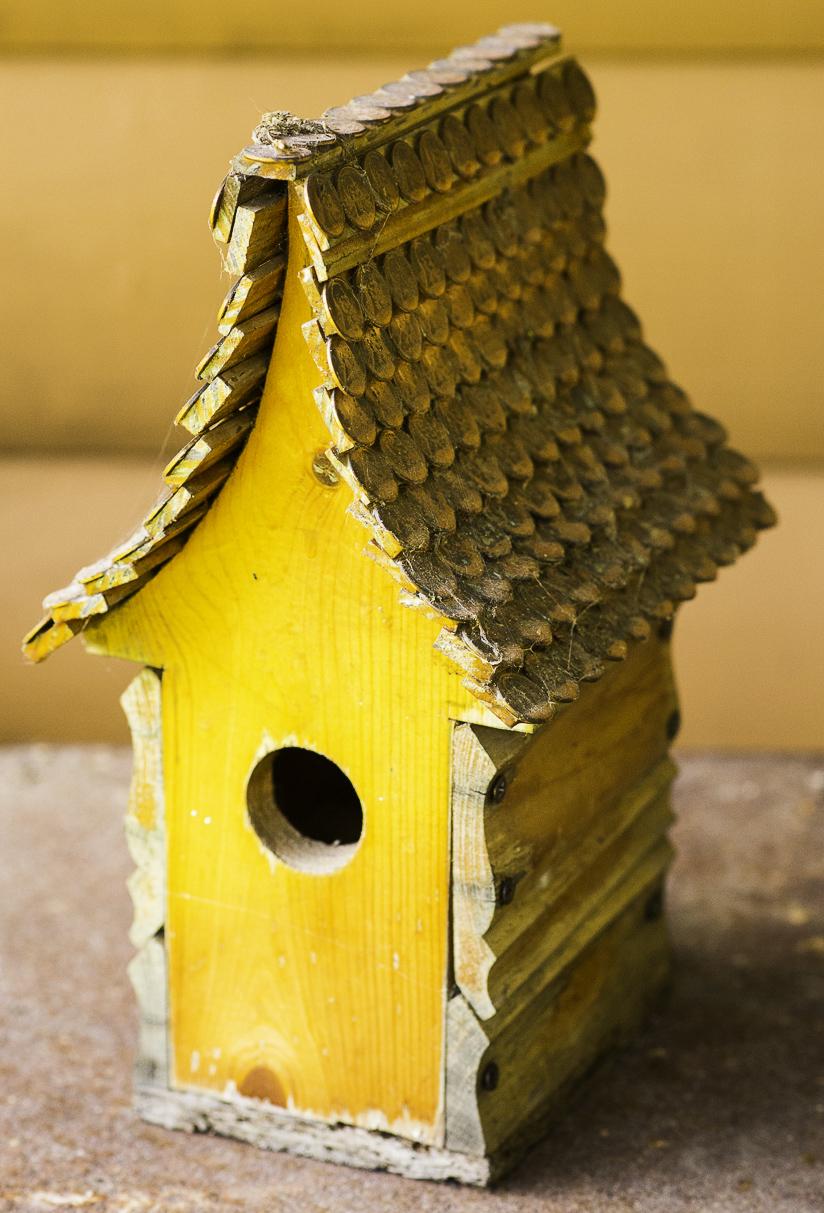 Rustic rentals-0861.jpg