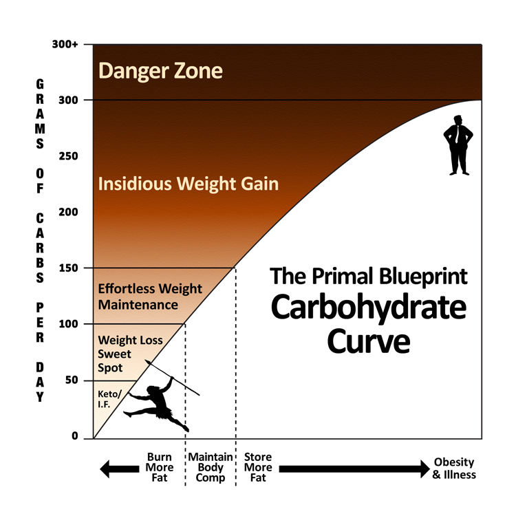 How am i eating these days march 2016 primal paleo ketosis this curve will vary depending how many totally calories youre eating and how much fat you intake as well i usually remain at or just below the 100g mark malvernweather Choice Image
