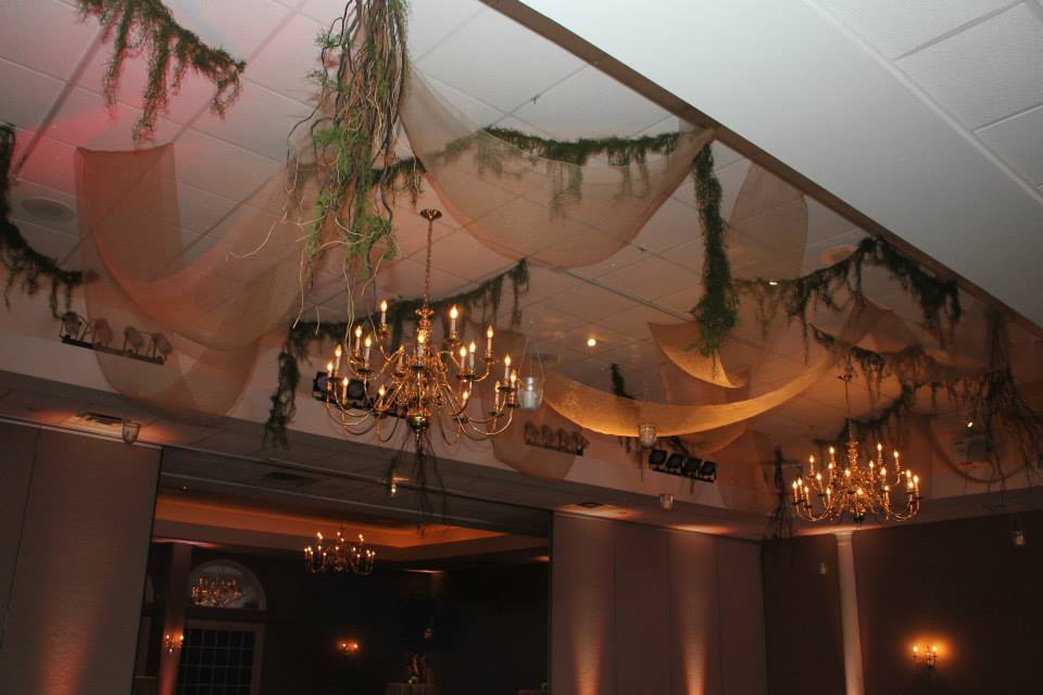 Earthy ceiling decor with burlap, moss and curly willow