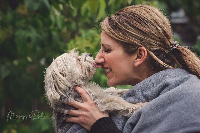 Kobee is the best kisser ever. #tongueouttuesday #tot #mamasboy ... #yycphotographer #petphotography #dogphotography #yycpetphotographer #yycpets #yycdogslife #dogportraits #yycliving #minischnauzer #terrier #doglover