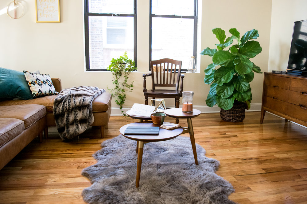 How To Style A Mid Century Modern Living Room