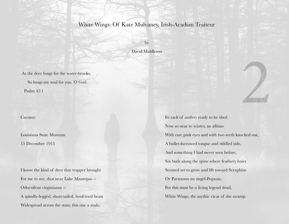 david's poem.jpg
