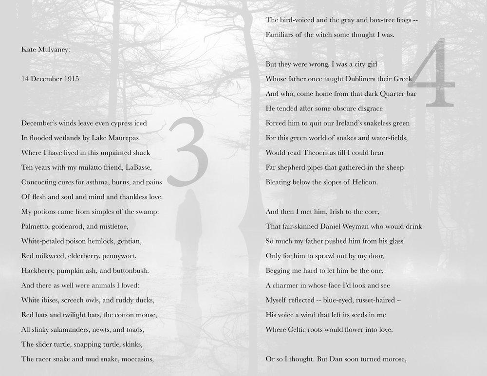 david's poem2.jpg