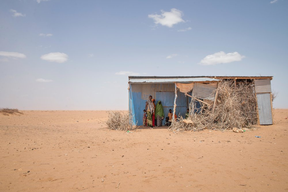 "A family waits for a sandstorm to pass in an isolated village near Hadado Town in Wajir County, Kenya.   ""The livestock is weak now,"" said Gigsy Dakane, 47. ""I have no means to move. I'll just stay here and wait for the rains."""