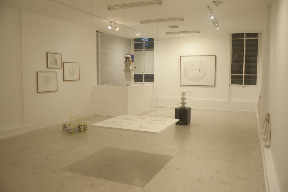 overview look of gallery.
