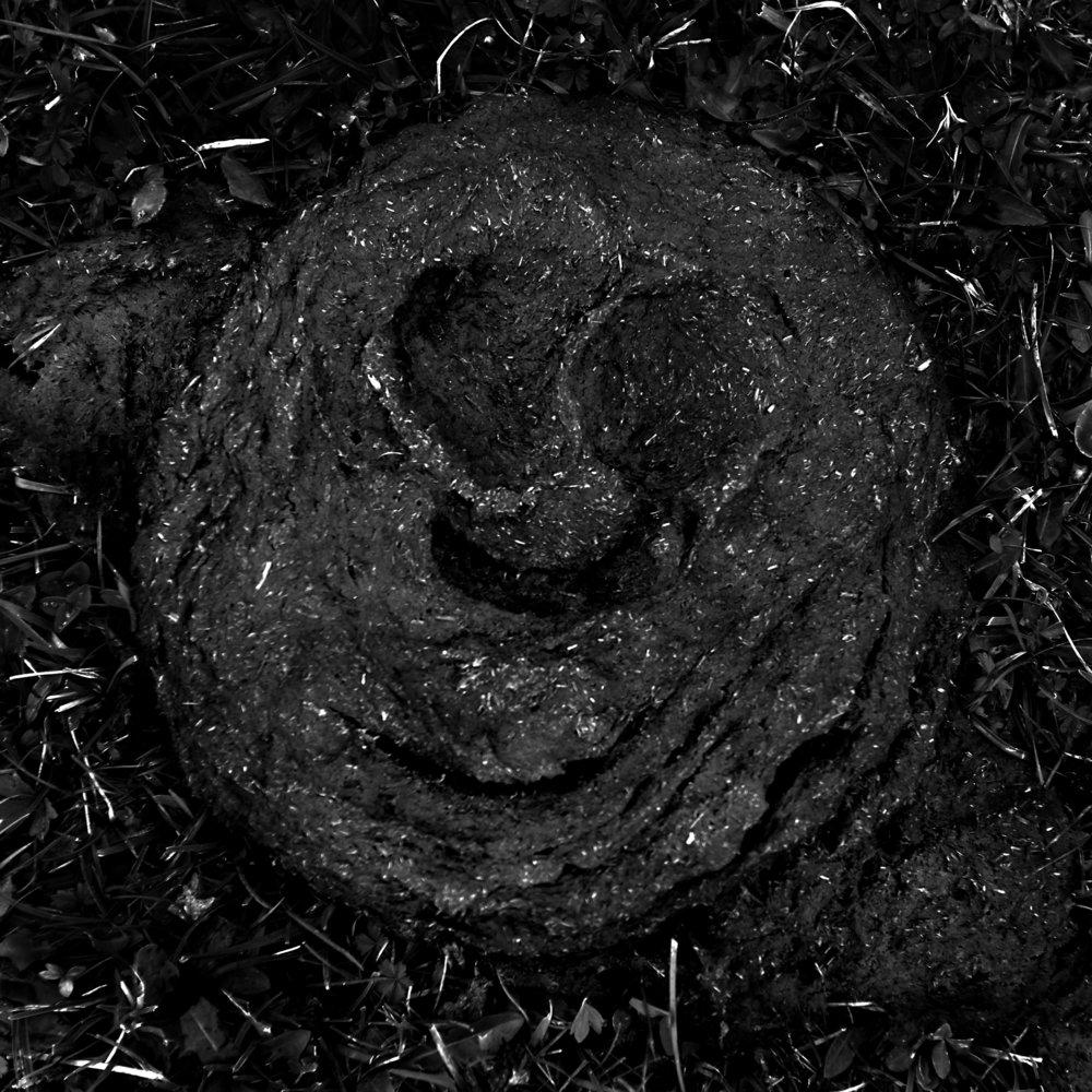 Smiley  En naturlig påminnelse om värdet av leendet som humörssymbol  Val Gardena, Seiser Alm,Sept 04 2017