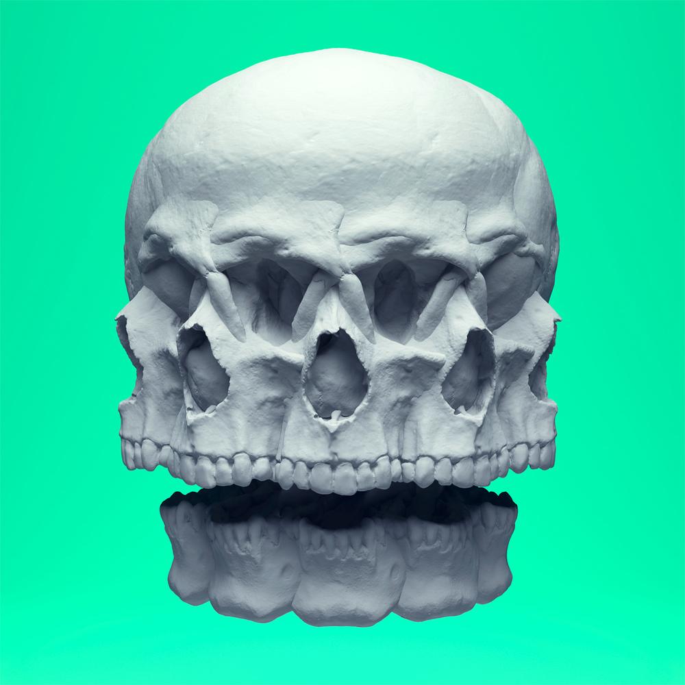 Skull_Rotate_01_1500px.jpg