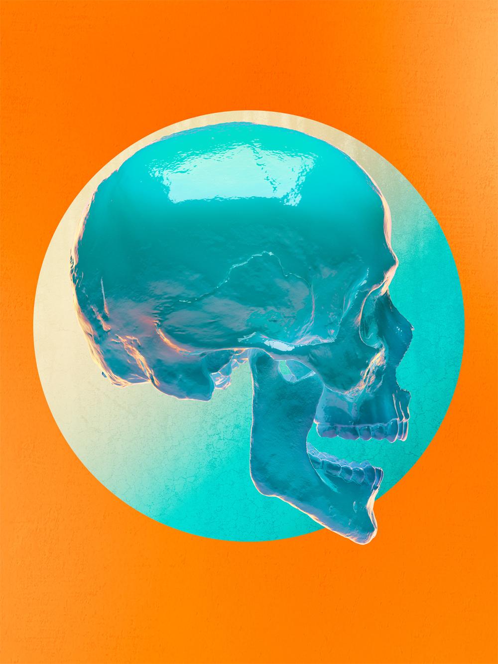 Skull_Side_03_1500px.jpg