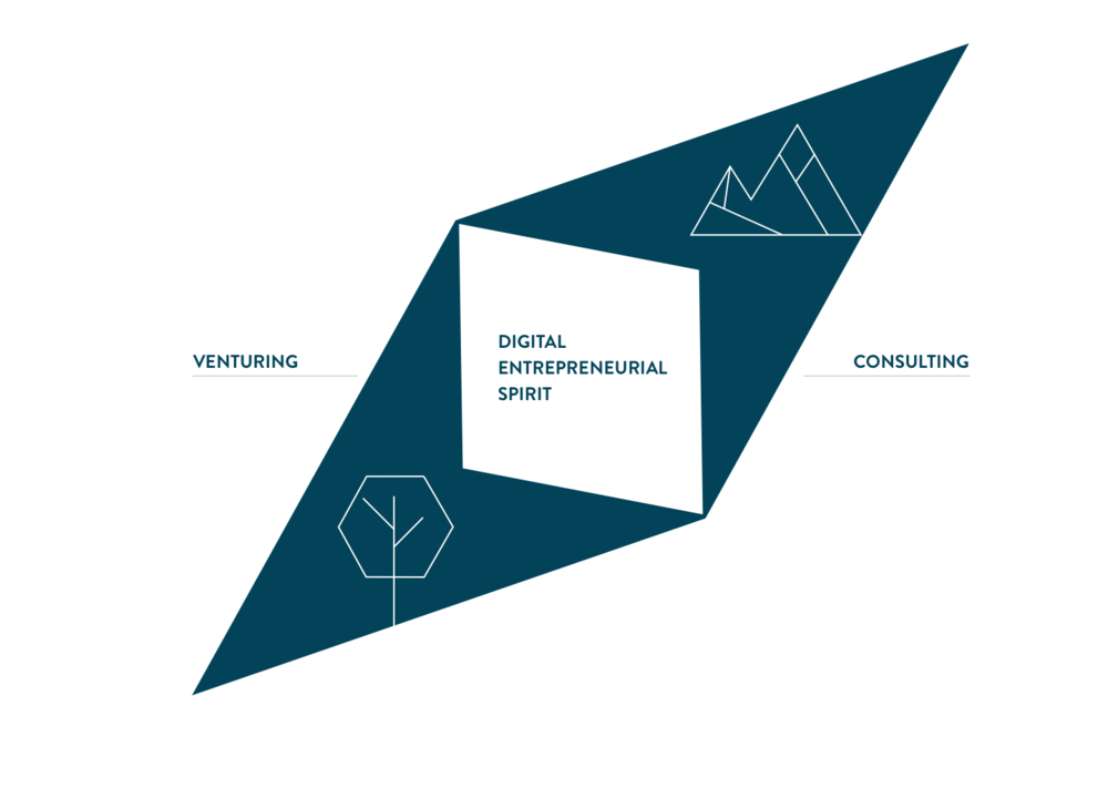 Compass - Digital Entrepreneurial Spirit