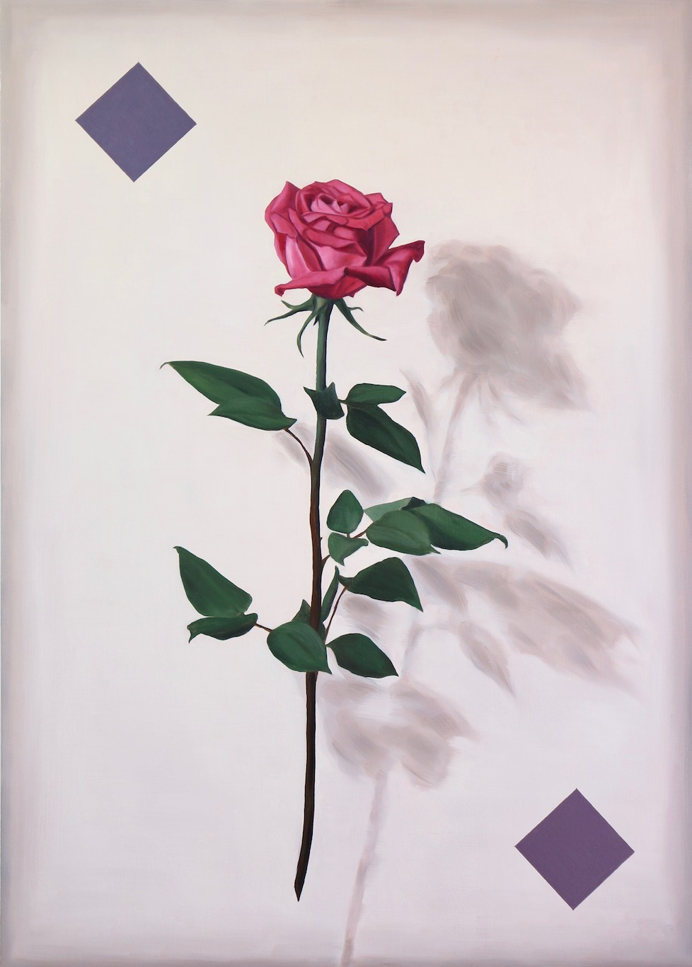 Portrait of a Rose, oil on wood panel, 70x50cm, 2018
