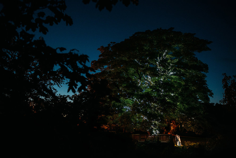 couple under the big lit tree at Stirk house