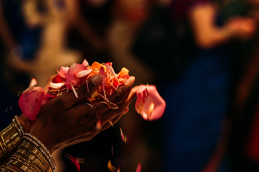 close up of flower petals in hands