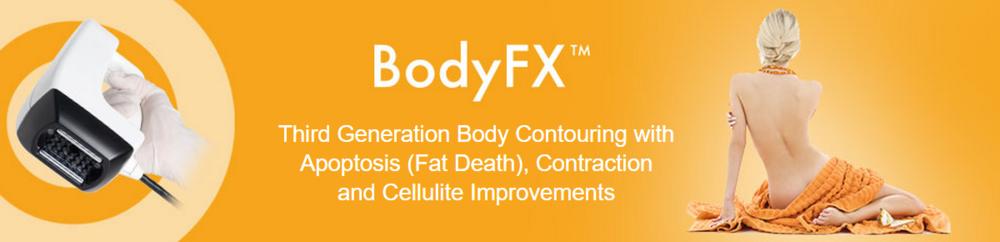 bodyfx banner