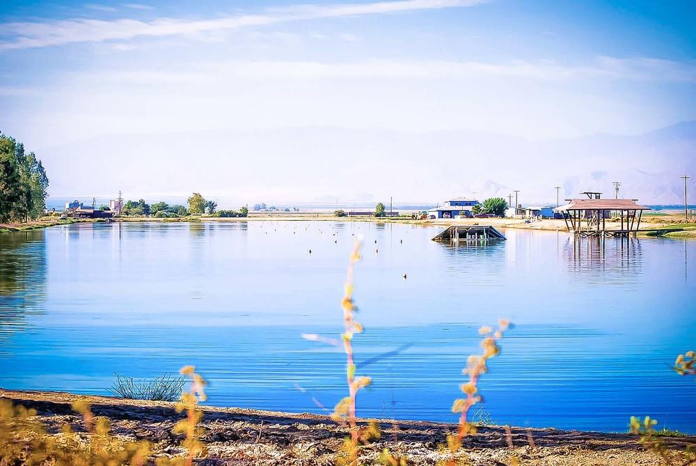 irowood-lakes-1.jpg