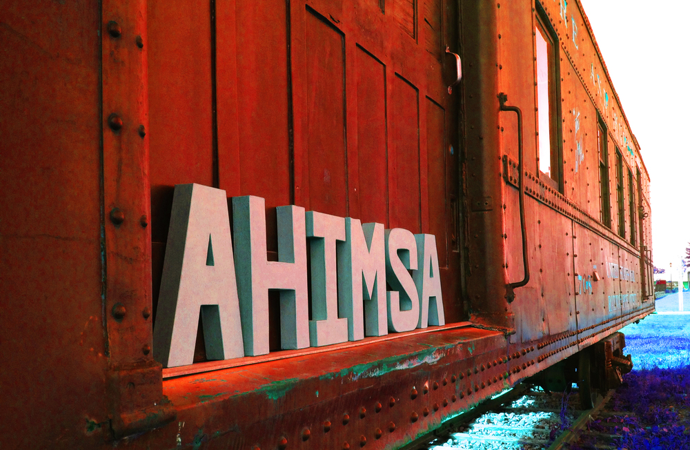 Ahimsa everywhere by train 1photo copy.jpg