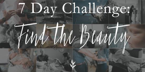 Albuquerque Newborn and Family Photographer challenge
