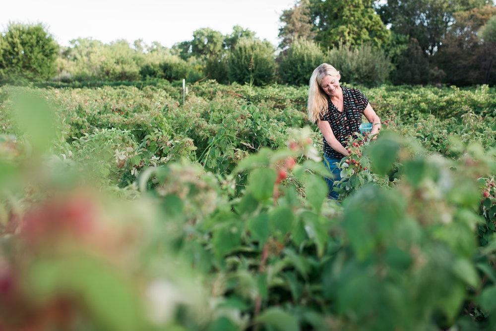 Heidi's Raspberry Farm - Corrales, New Mexico