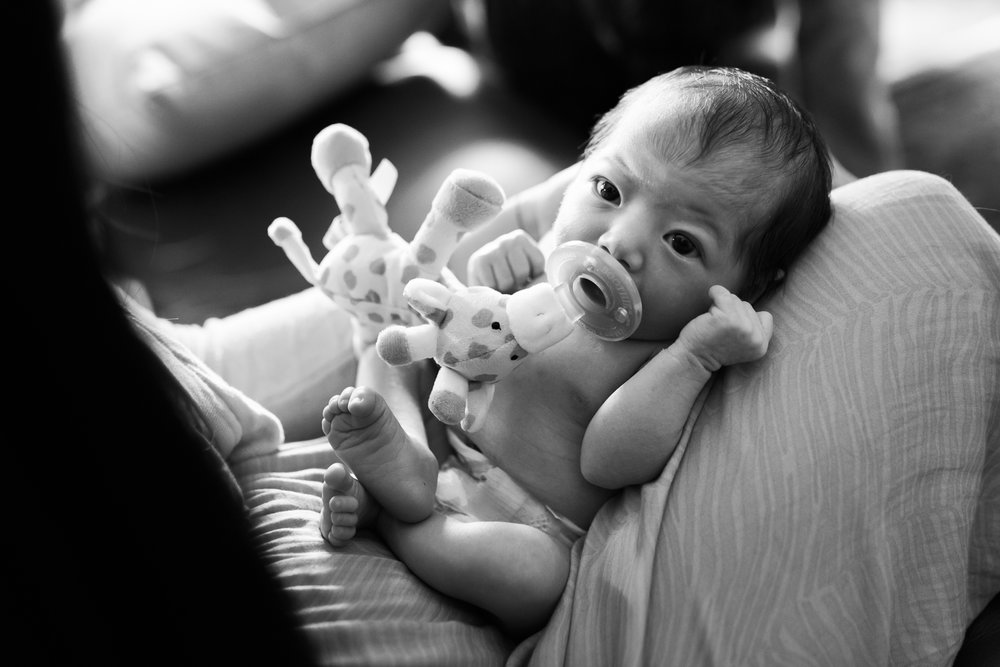 Newborn Photos ABQ Photographers home-27.jpg