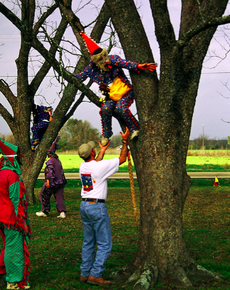 A Tee Mamou Mardi Gras in a tree | Photo: Carolyn Ware