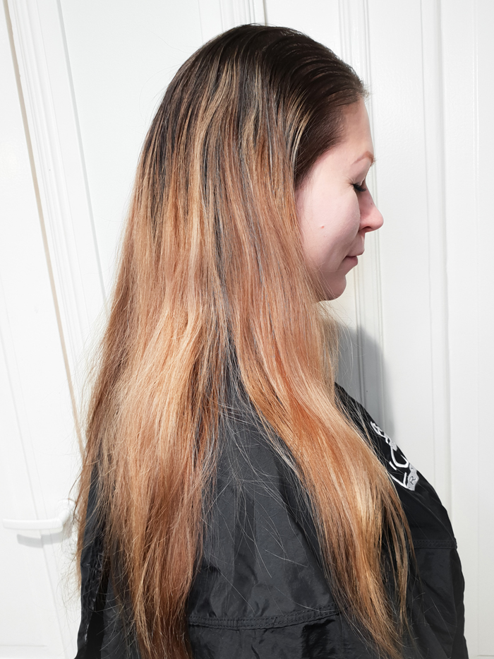 beforecopperbalayage.jpg