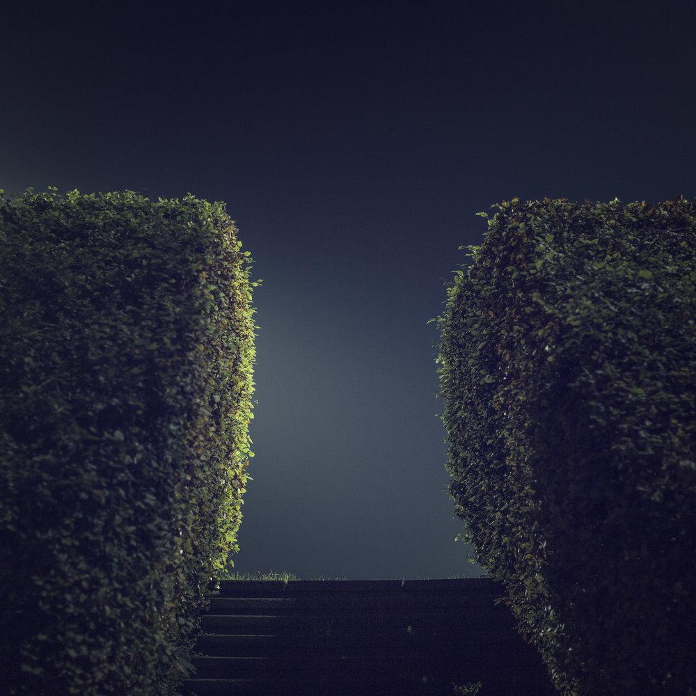 lyngby_hedge_print.jpg