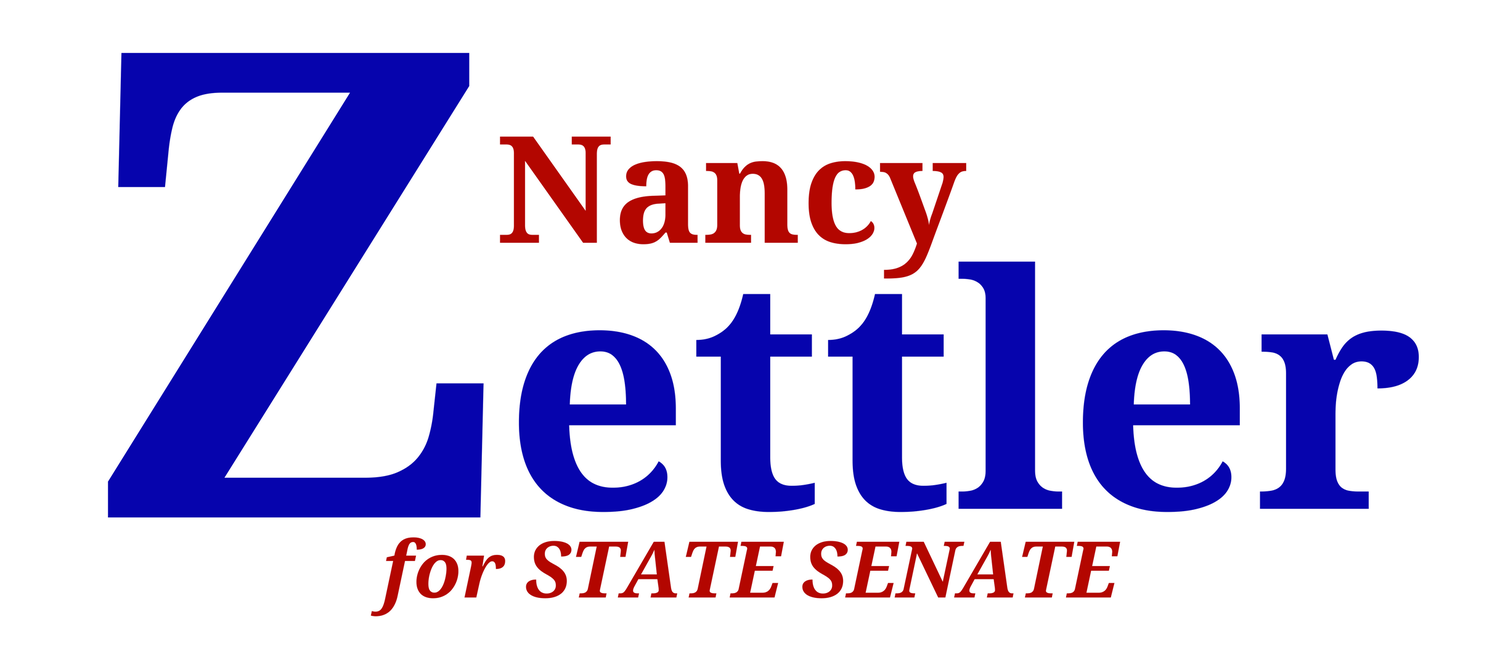Vote Nancy!