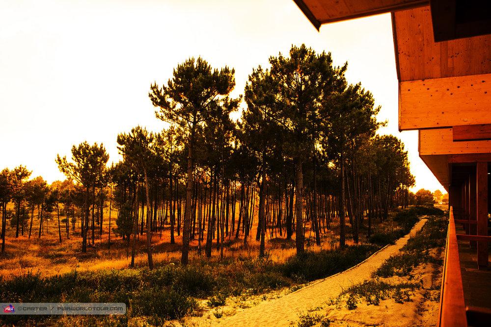 PG18_ls_Feel_Viana_sunset.jpg