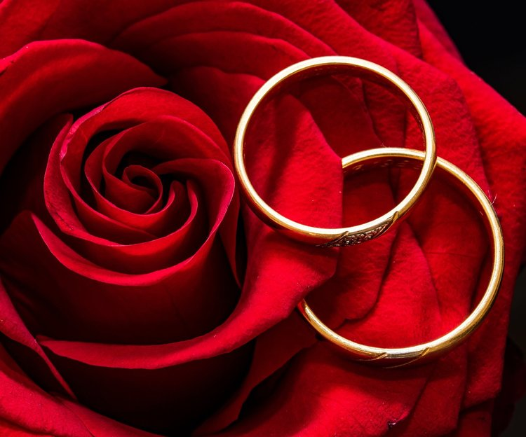 Rings with Red Rose pexels-photo-415334.jpeg