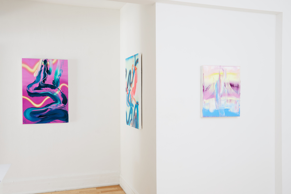 Installation View, Project Gallery, Toronto, Photo Credit: Spencer Robertson