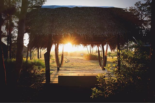 Looking forward to another #beautifulday in #belize 🌅💛#sunrise #hammocktime  at #monkeybaybelize #belizestudyabroad #studyabroad #thatch #chilling