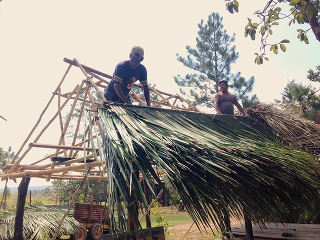 The smell of fresh #cohune #thatch is so relaxing but #thatching #roofs is #hardwork.  Thanks to our skilled team members Leroy Estrada (left) and Chester Pop (right) who make it look easy 😉 #hammock #chillzone #platformcamping #monkeybaybelize