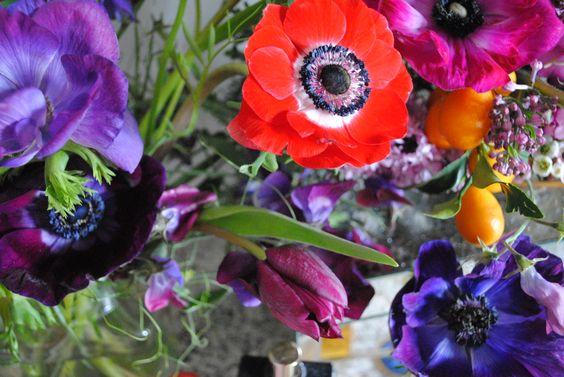 Anemone arrangement by San Diego floral designer Botanicamuse / @botanicamuse