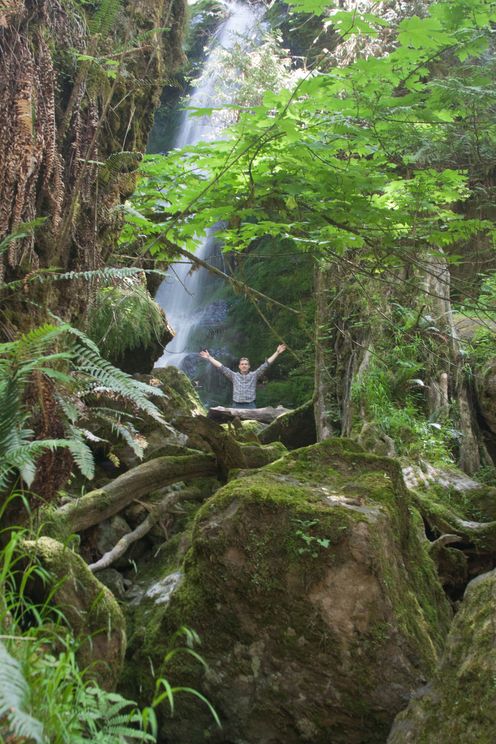 Exploring the forests of the Olympic Peninsula