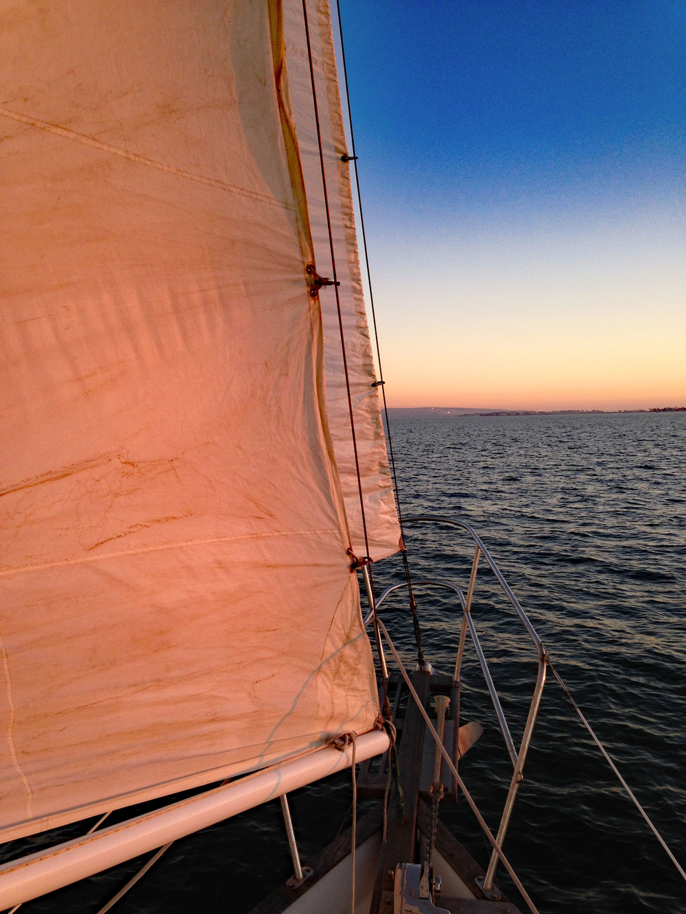 Sailing in San Diego Bay Sunset