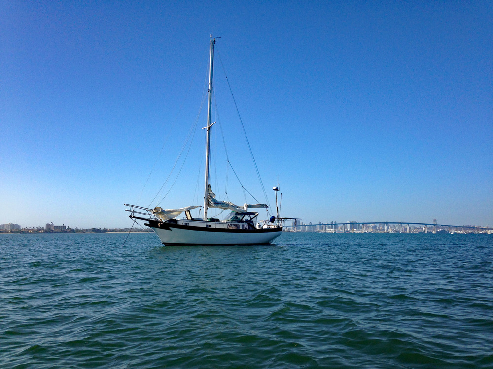 sailboat, sailing, San Diego harbor, Sailor, Captain, Marina