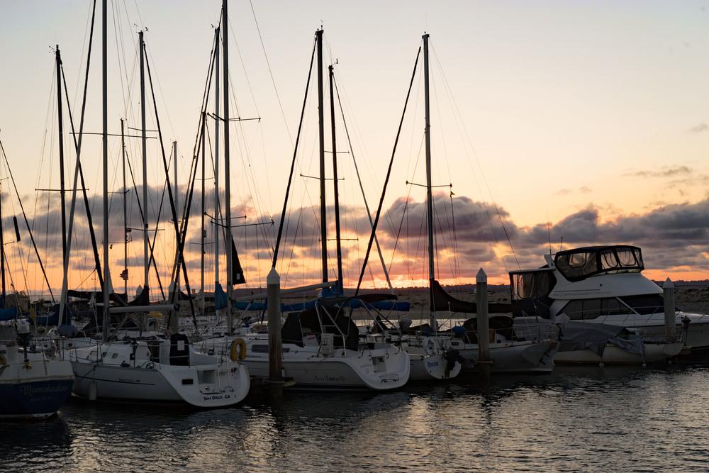 Sunset, sail boat, sailing, sail, marina, ocean
