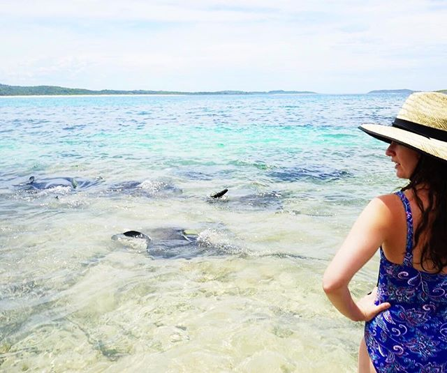 Daydreaming of the time I swam with manta rays ❤️ Can't believe it's been over a month since I left Australia right before winter hit. Back in Florida getting ready for another beautiful hot summer! 🙌🏻👌🏼