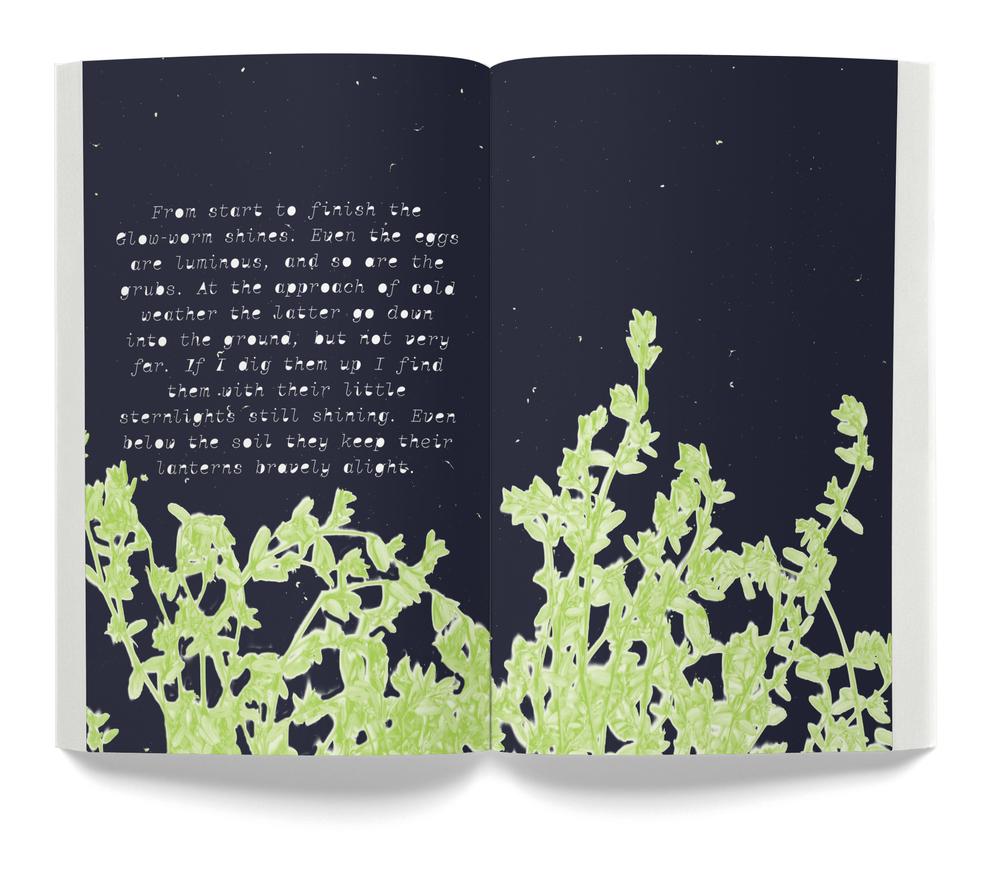 Book 0034-3 2016-07-20.jpg