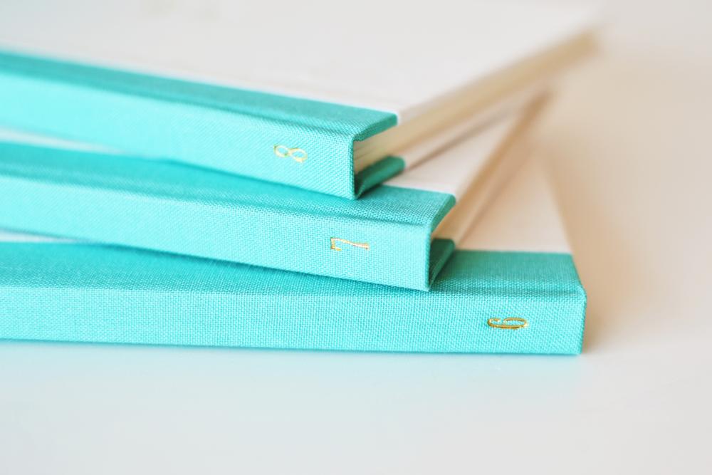 custom notebook beija-flor