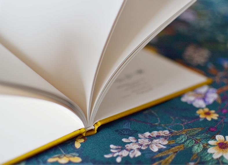 cadernos capa dura beija-flor