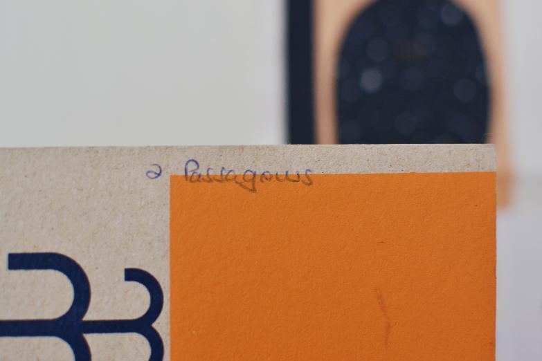 beija-flor diary