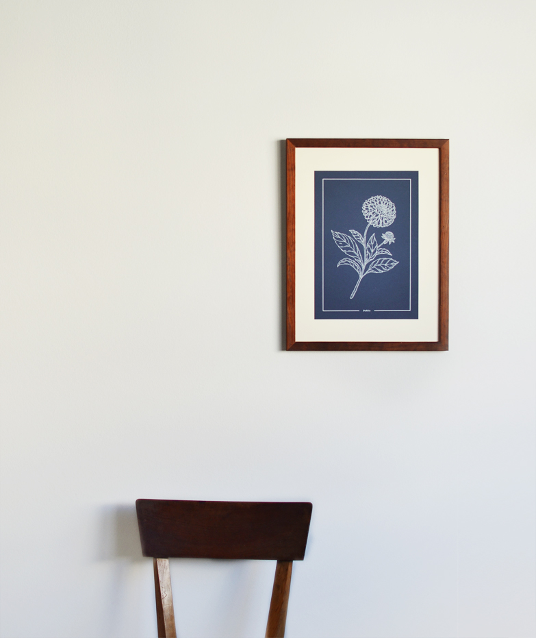 print beija-flor Dahlia