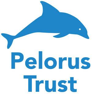 Pelorus logo.jpg