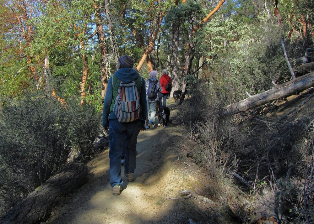 Hiking along the Layton Ditch in the Williams Valley, Photo: Cheryl Bruner