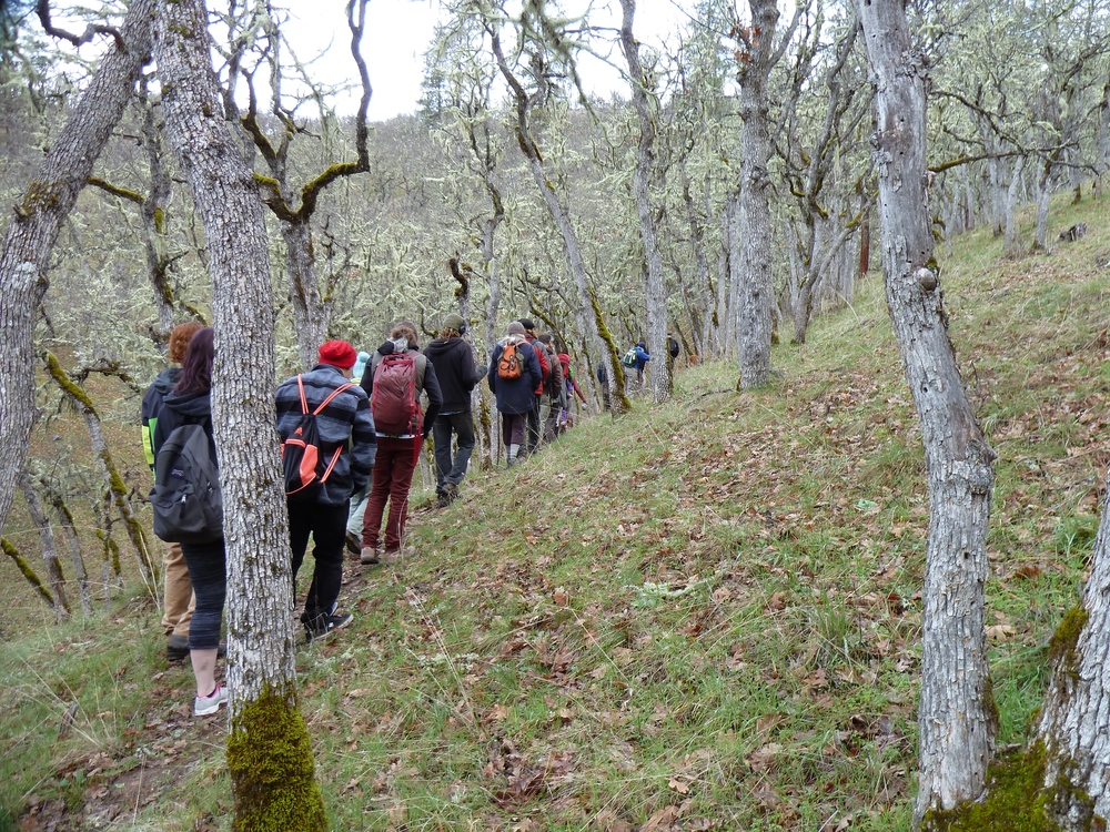 Community Hikes