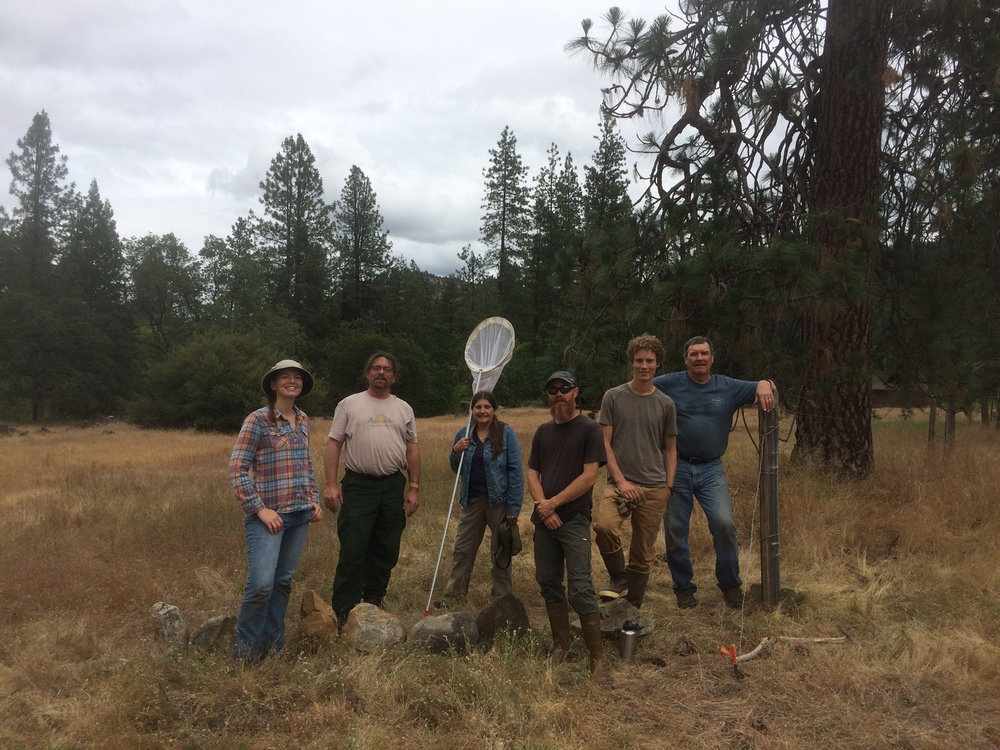 Monarch butterfly and pollinator habitat restoration work party, with participants from the Forest Service, ANN, Southern Oregon Monarch Advocates, and the Applegate River Watershed Council.