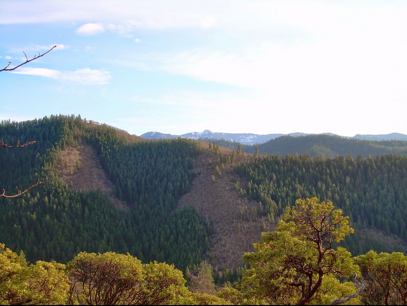 The view from the Sterling Mine Ditch Trail across the Little Applegate River Canyon to units 27-20 and 26-20, proposed for logging in Alternative 4. One mile of new road construction would be built in the Trillium Mountain Roadless Area to facilitate logging these uncut forests.